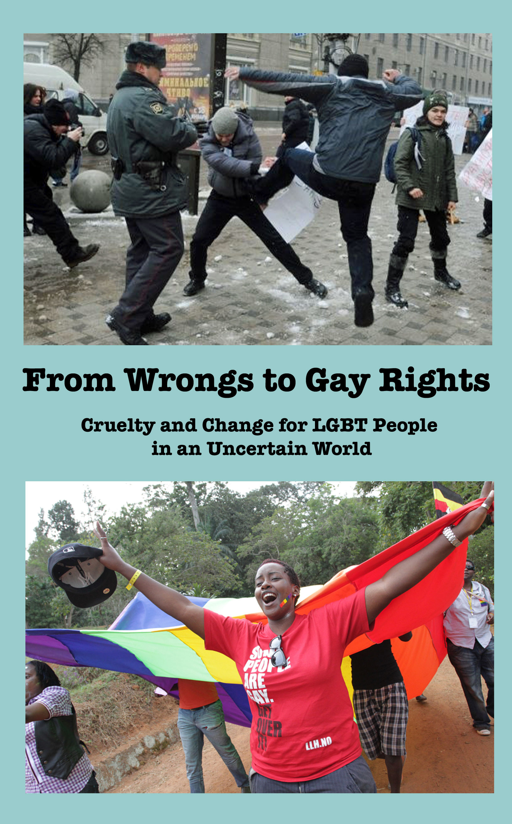 Cover of the book From Wrongs to Gay Rights