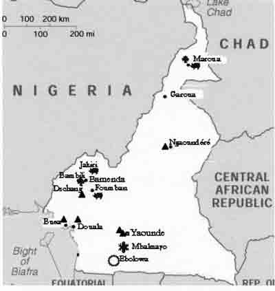 Eastern Cameroon borders Chad, Central African Republic and the Republic of the Congo.