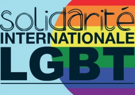 Logo of Solidarité Internationale LGBTQI