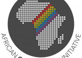 Logo of the African Queer Youth Initiative