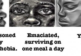 Graphic for the fundraising campaign for the Not Alone / Pas Seul project in Yaoundé, Cameroon.